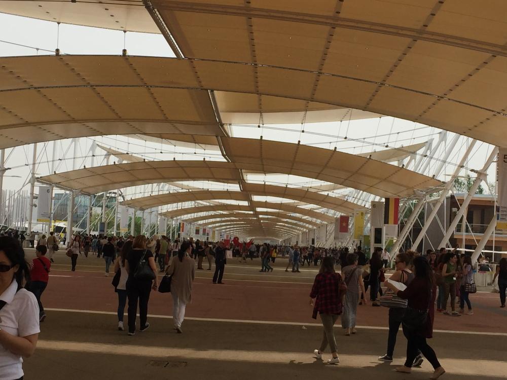 EXPO MILANO 2015 (2/4)