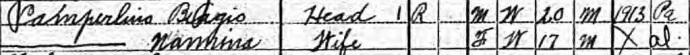 Biagio Camperlino - 1920 census - Ancestry.com